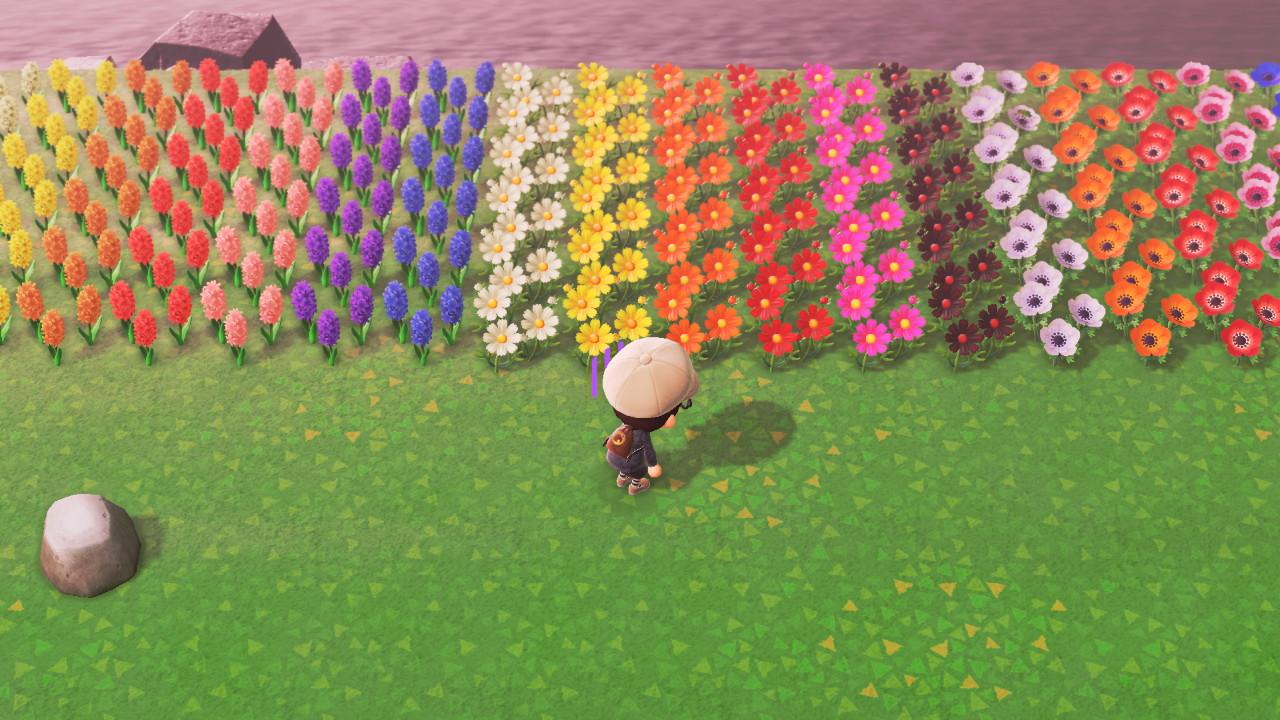 植え 花 の あつ 方 森